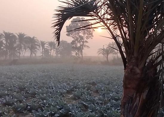 কুয়াশা না থাকায় কনকনে ঠাণ্ডা নেই সারাদেশে